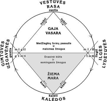 Rėdos ratas pagal A. Žarskų